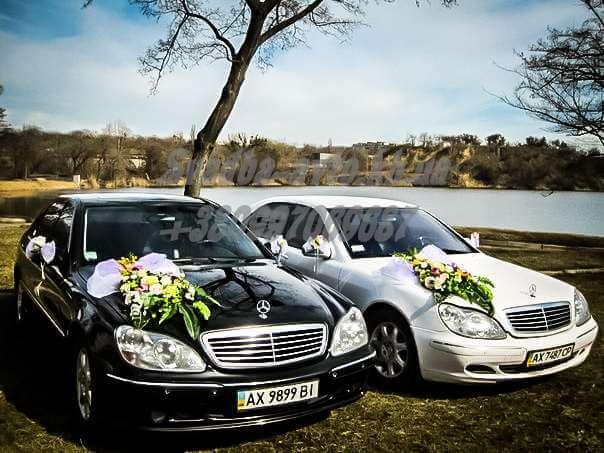 Svadba-avto-83